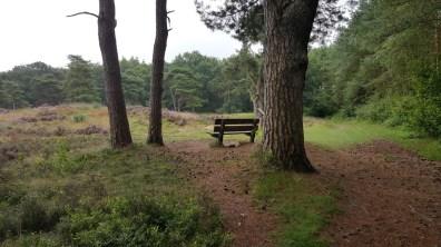 Wandelbankje Augustus 2017 landgoed De Eese Drenthe