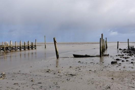 Texel - Wadden