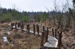Vlonderpad Dwingelderveld
