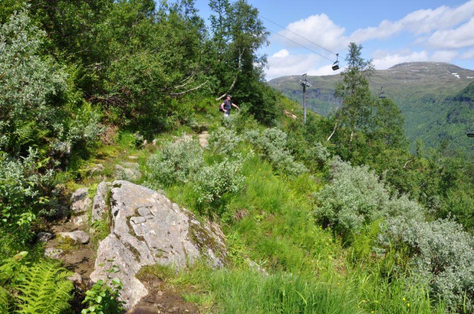 Noorwegen wandeling Myrkedalen