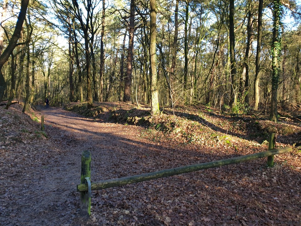 Wandelroute Hunebed Diever