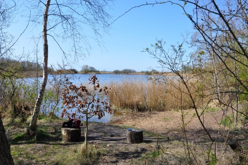 Wandelroute Lauwersmeer 12 km