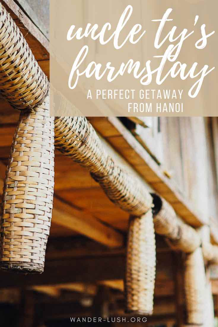 Travel to Uncle Ty's Farmstay, a rural homestay village retreat close to Hanoi, Vietnam