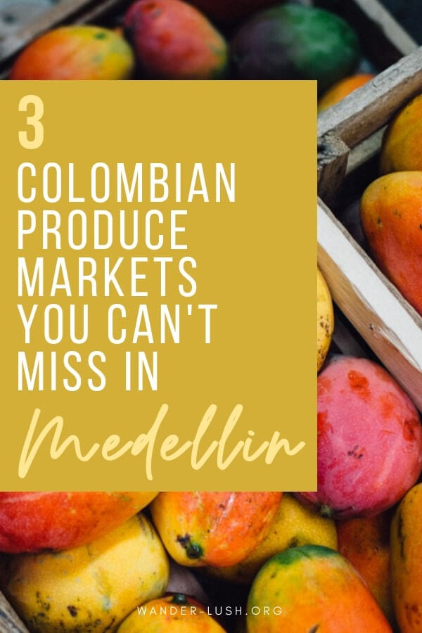 Vibrant, fresh and authentic—here are the 3 best local markets in Medellin to visit for a taste of Colombian commerce and culture.