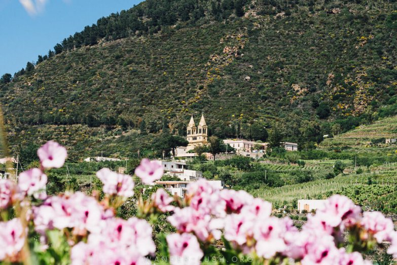 A church at the bottom of a mountain with pink flowers in the foreground.