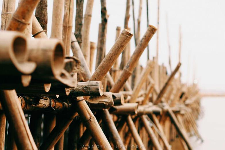 A close shot of the bamboo poles used to construct the Kampong Cham bamboo bridge.