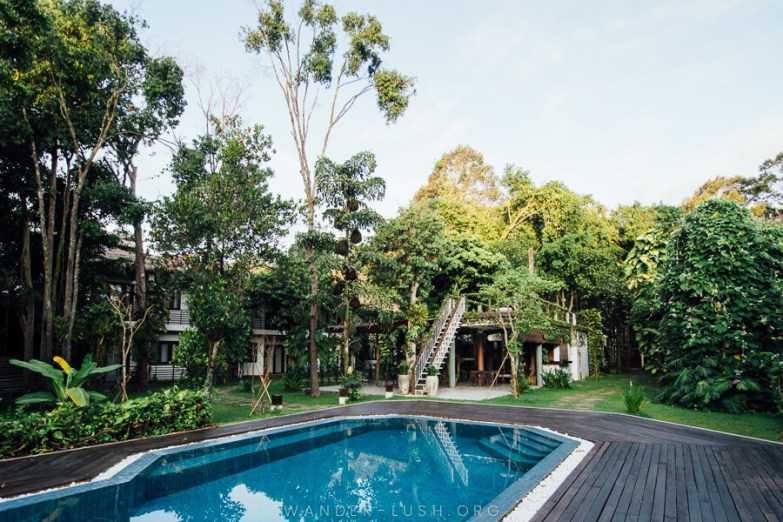 A swimming pool surrounded by trees and a dark-coloured wooden deck.
