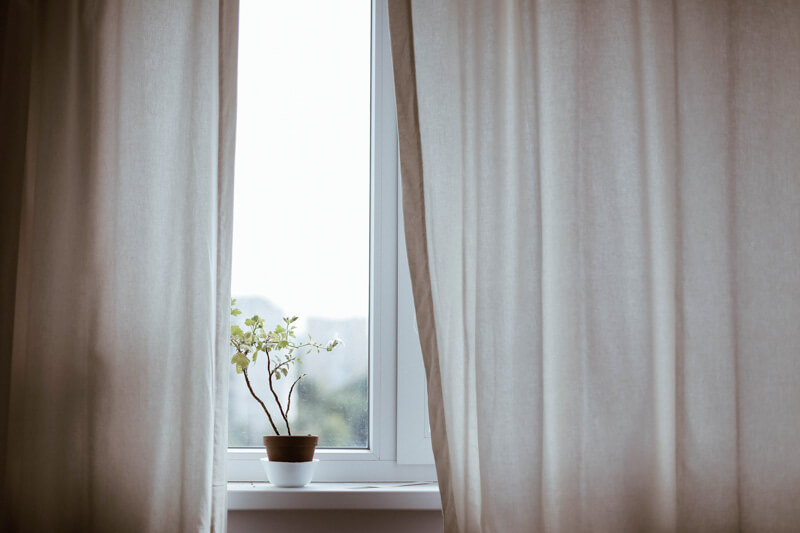 A window with soft white curtains and a small plant on the windowsill.