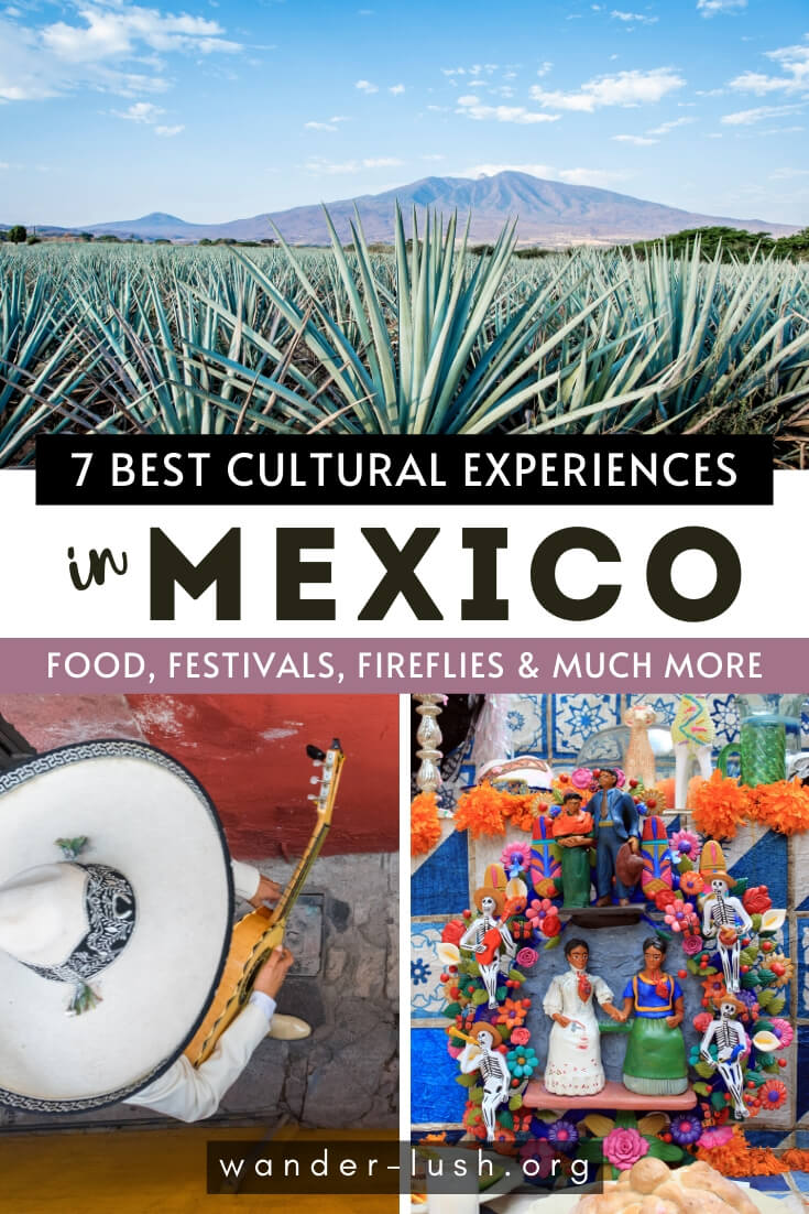 7 vibrant festivals and cultural activities for cultural travellers to Mexico. Includes food, tequila, traditional rituals and more.