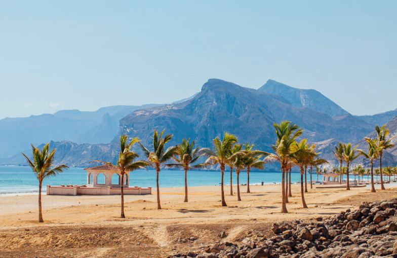 A beach lined with palm trees in Oman.