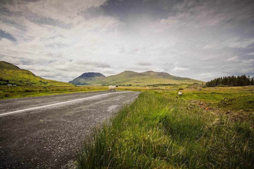 travel ireland without a car