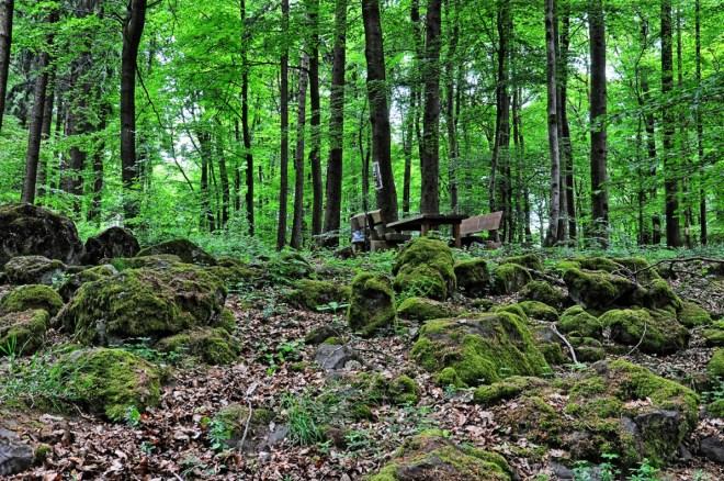Keltischer Ringwall auf dem Steineberg