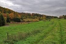 Tiefenbachtal