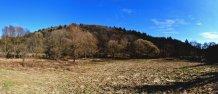 40uessbach-Auen