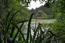 0020-Vogelschutzgebiet-Ritz