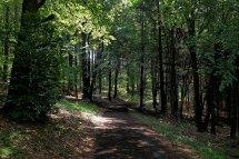 panoramaweg-9177-2