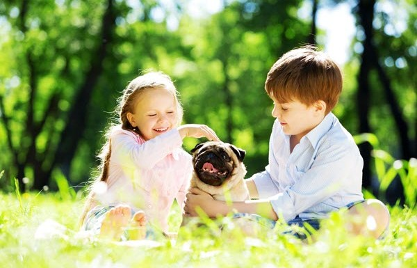 9 Breeds of Dogs You Didn't Know were AMAZING with Kids