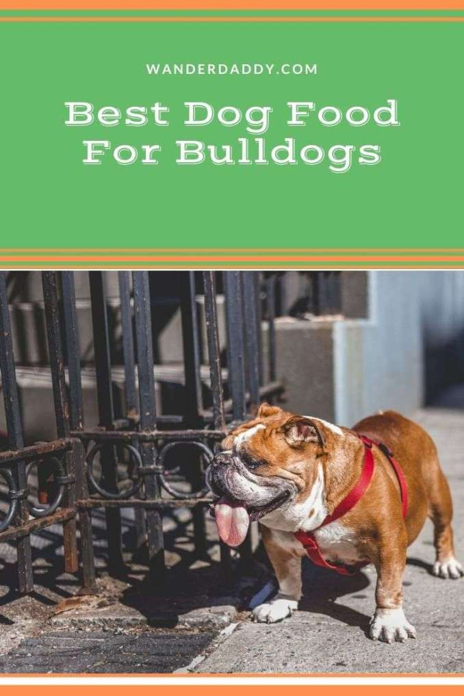 Best Dog Food For Bulldogs