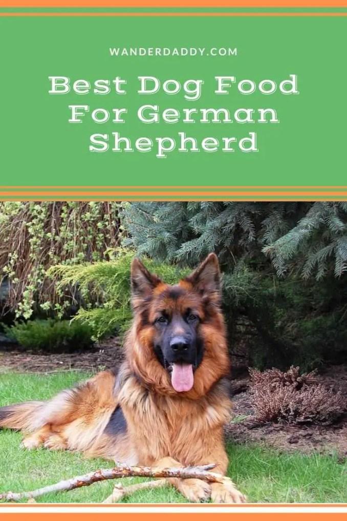 Best Dog Food For German Shepherd