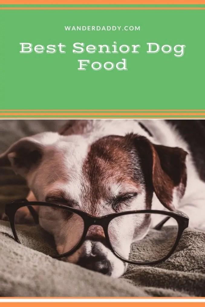 Best Senior Dog Food