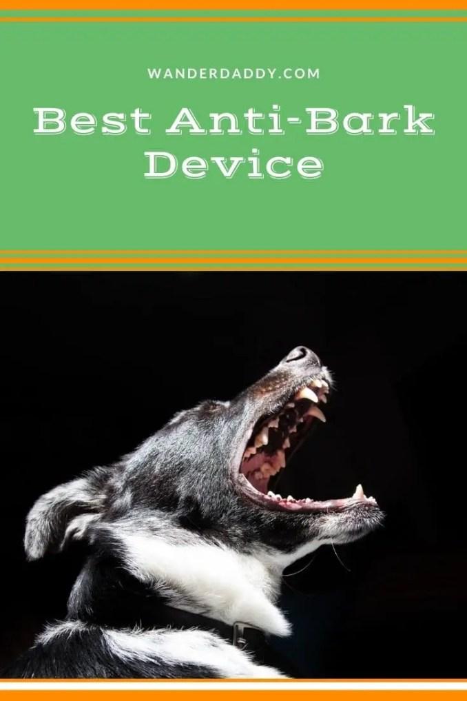 Best Anti-Bark Device
