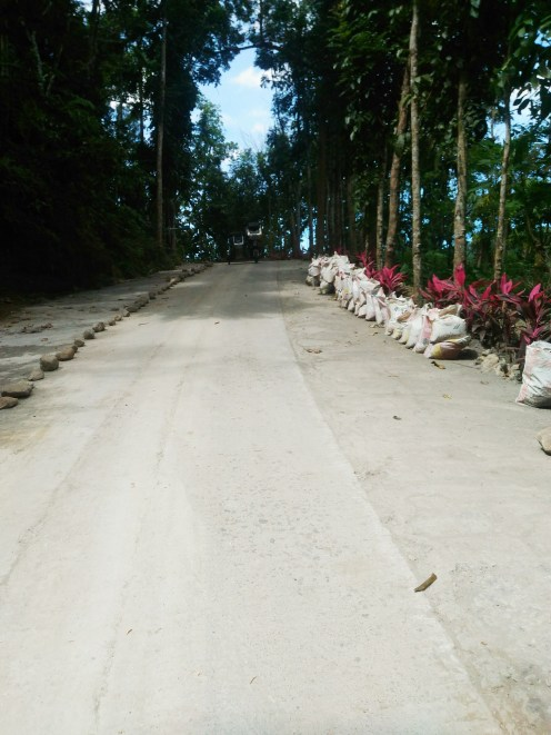 Road down to the resort