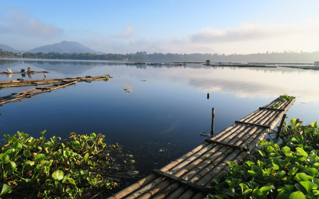 Seven Lakes of San Pablo in Laguna : A P647 Itinerary