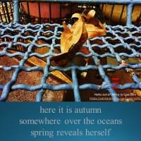 Southern autumn