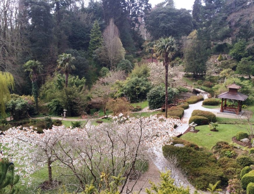 Japanese Gardens, Powerscourt Estate, Ireland