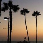 Travel Like A Local In California