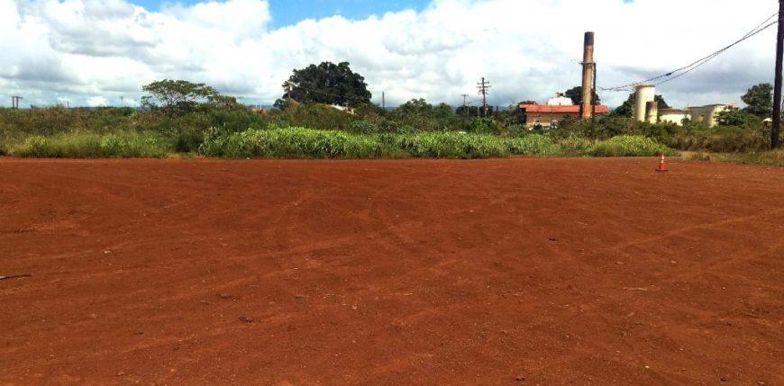 Hawaii Plantation