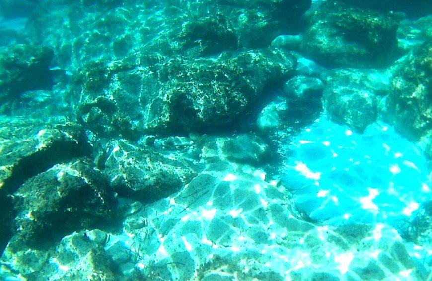 Snorkelling in Cyprus