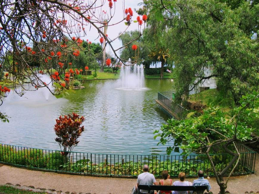 Sitting beside Funchal gardens