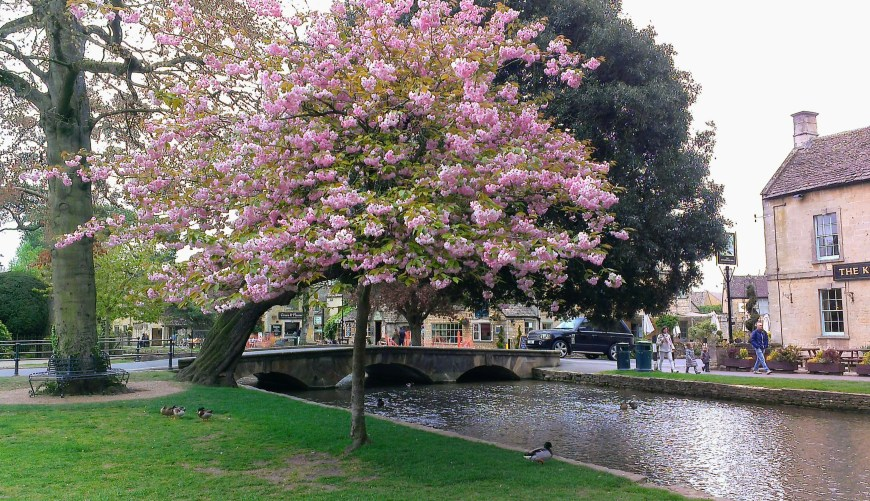 Bourton-on-the-Water with spring blossom