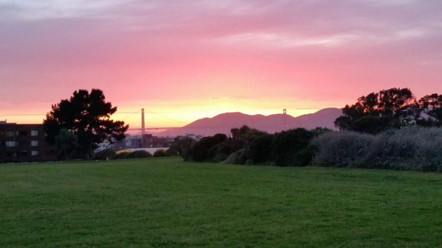 Through The Eyes Of A Local: San Francisco