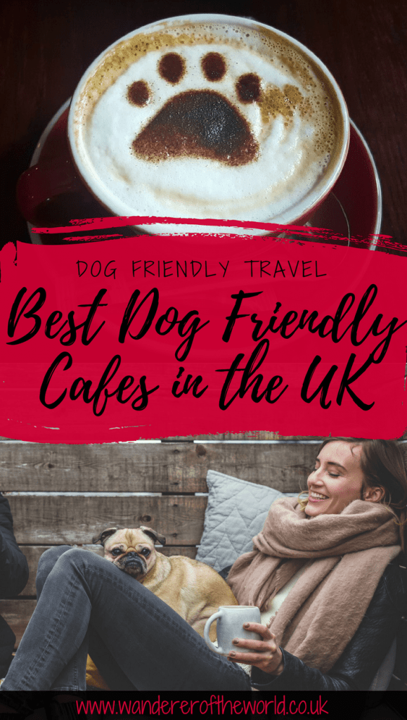 The Best Dog Friendly Cafes in the UK