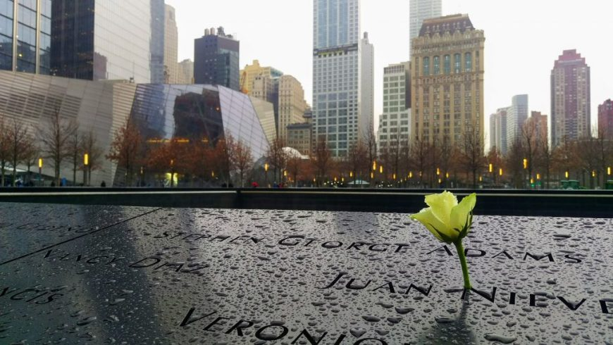 White roses at the 9:11 Memorial