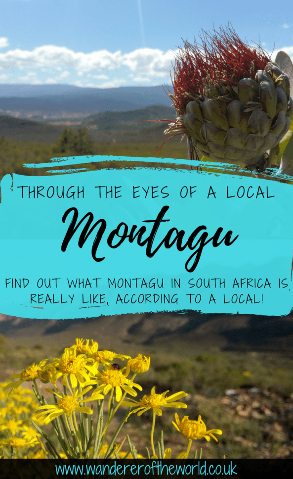 Through The Eyes Of A Local: Montagu, South Africa