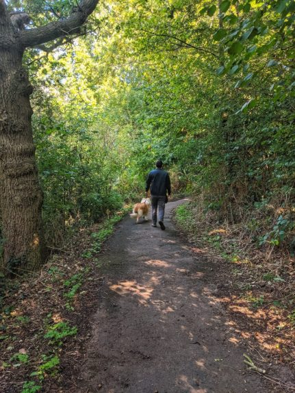 Leap Valley - Dog Walk