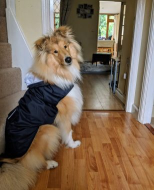 Kai wearing his coat