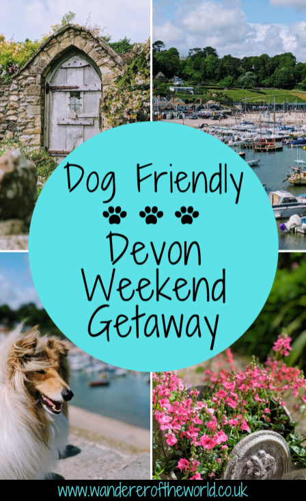 Andrewshayes Holiday Park: The Perfect Dog Friendly Weekend Getaway in Devon