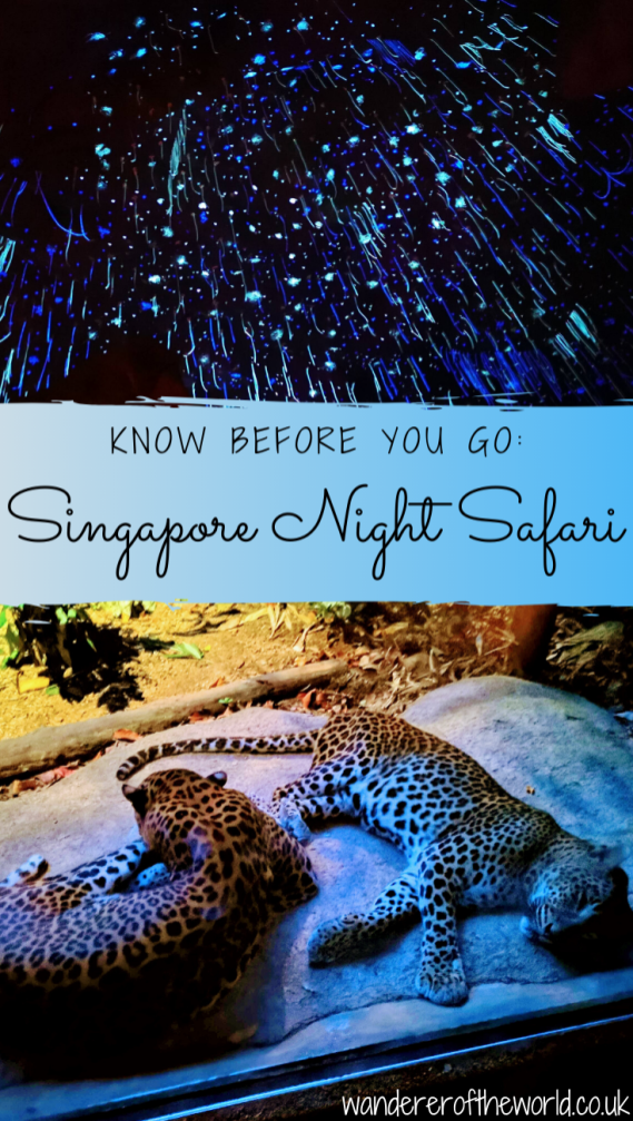 Singapore Night Safari: Know Before You Go