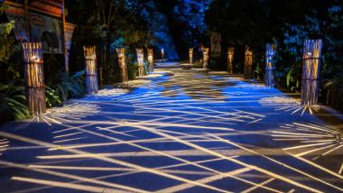 Singapore Night Safari: Know Before You Go