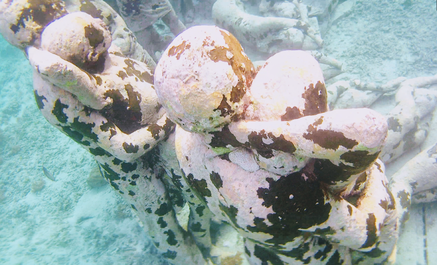 Coral growing on the Gili Meno statues