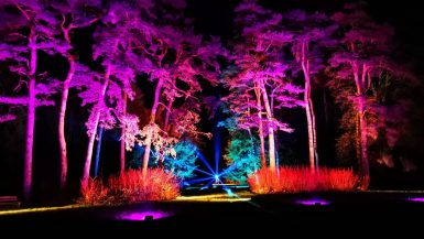 Westonbirt Enchanted Christmas Review