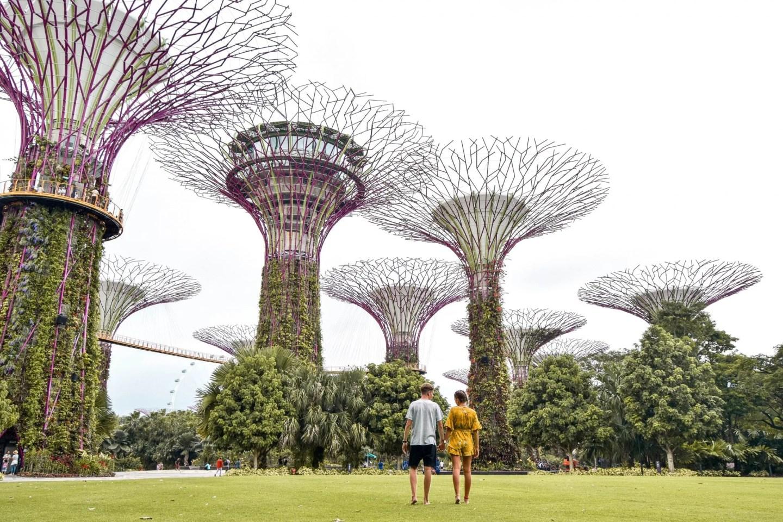 Gardens By The Bay + Light Show Singapore