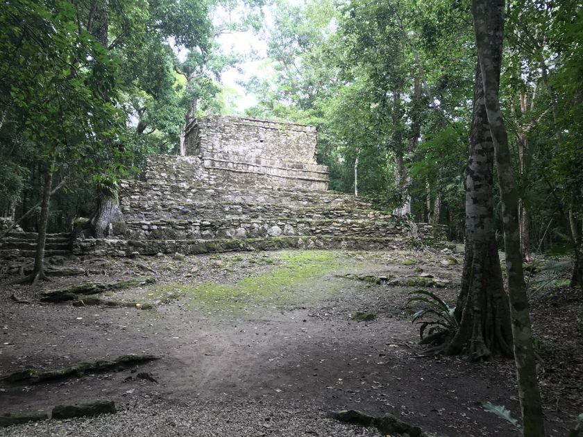 Muyil. Jungle and Ancient Structures
