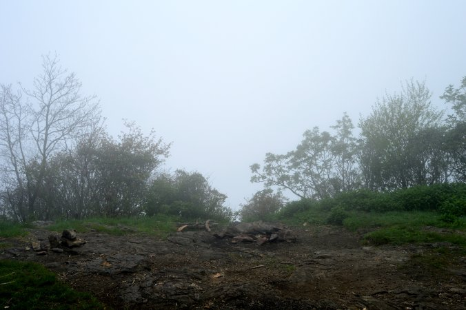 Our foggy view from Standing Indian Mountain