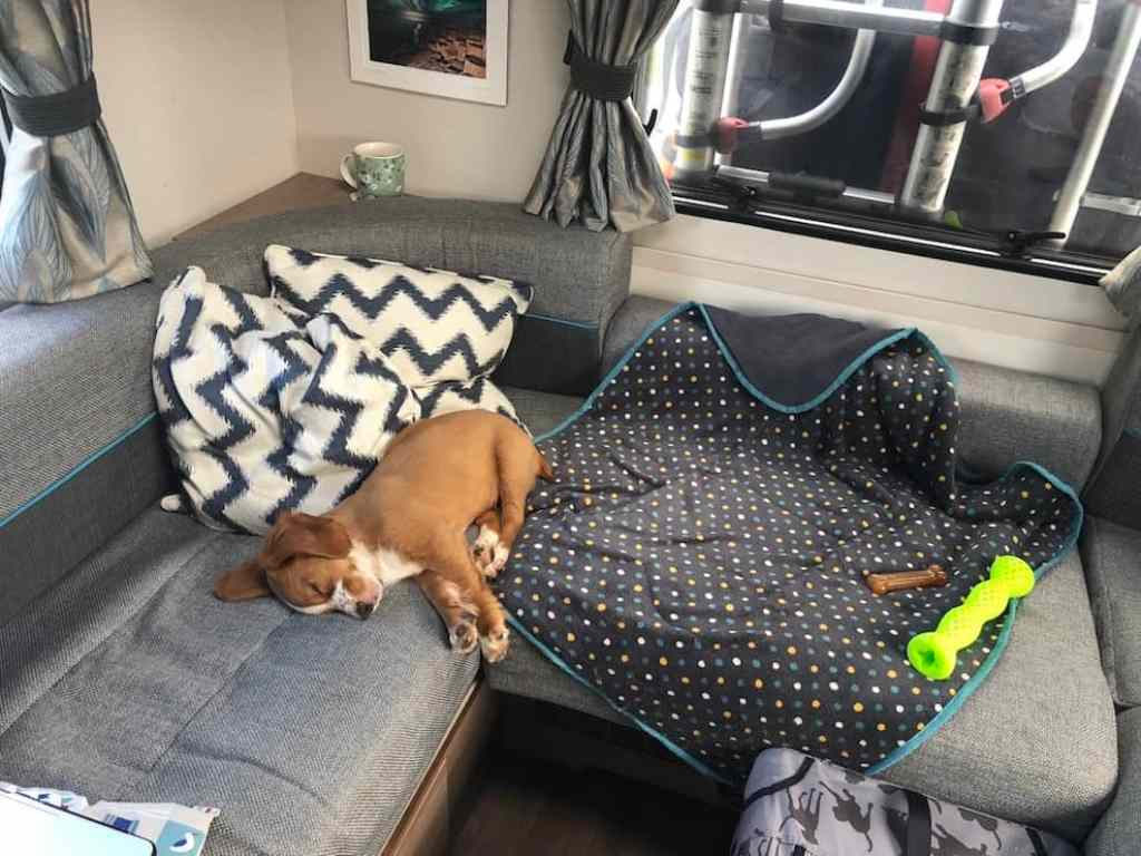 Our adventure puppy asleep in his motorhome! Our family now has an adventure puppy!! We're learning how to travel with a dog and find dog friendly places to visit on our road trips. #adventurepuppy #puppy #dogfriendly #travel #dog #adventure #roadtrip #motorhome