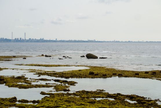 facing south along the coast